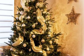 Merry Chrismas Everyone!